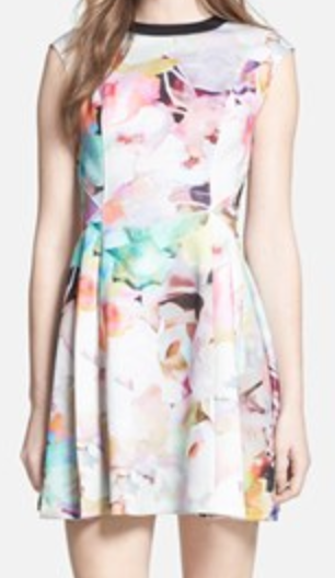 Ted Baker skater dress